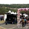 2018.4.13~15 京畿道桜祭り2.