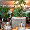緑に囲まれたヒーリングカフェでハーブティはいかが ~トゥル~