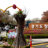 2018.4.13~15 京畿道桜祭り1